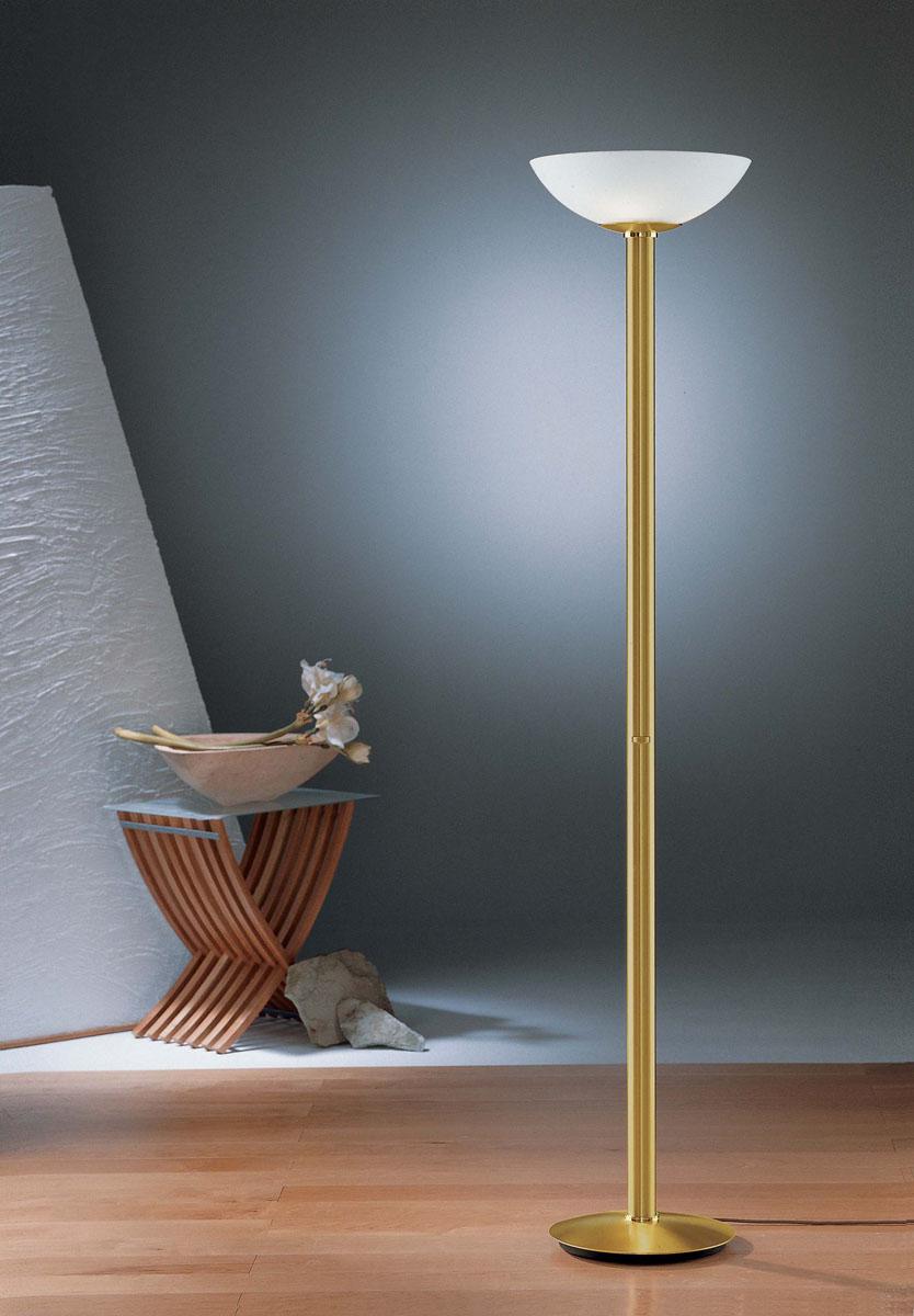 300w Halogen Floor Lamp Medium Rare