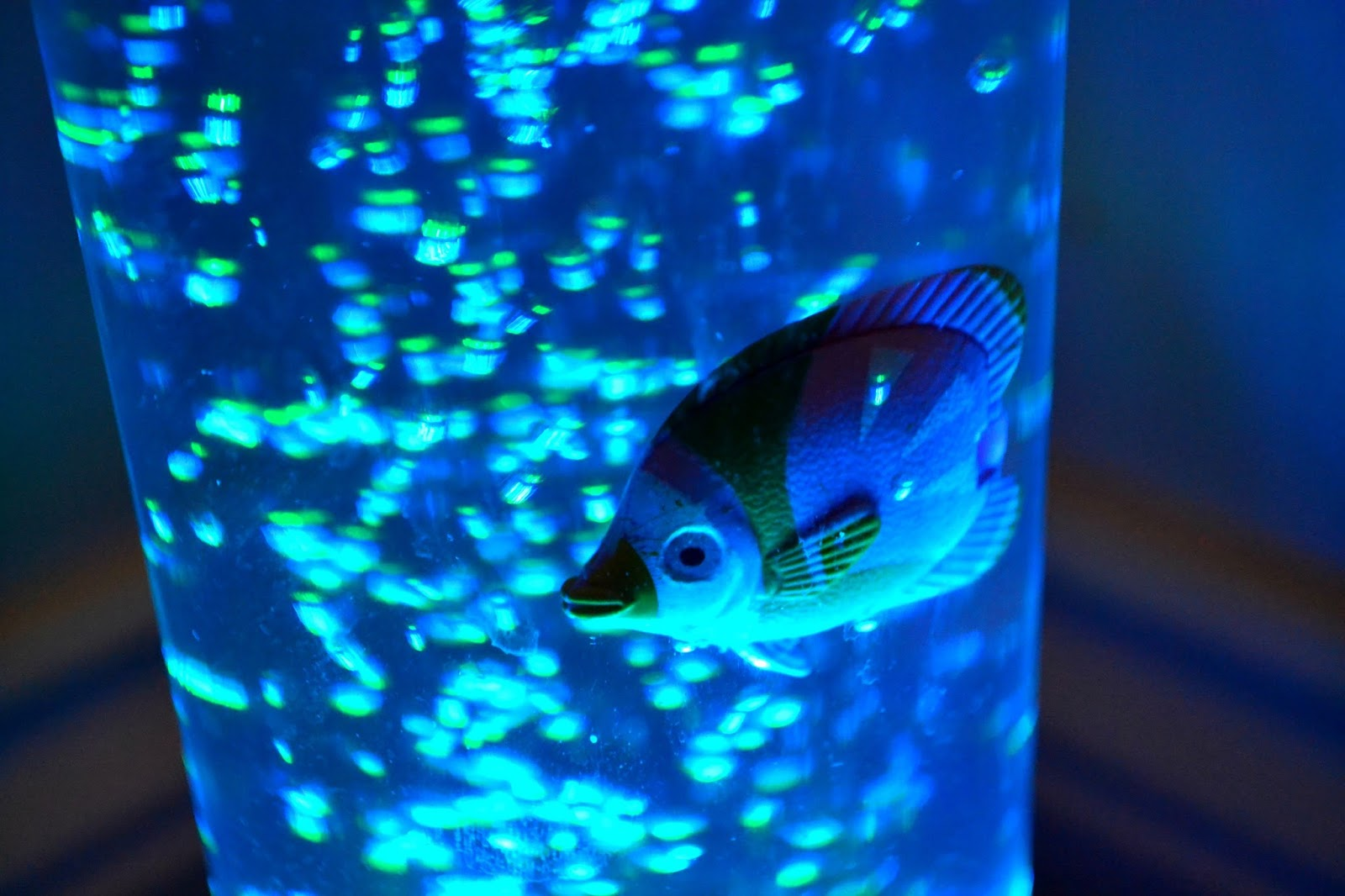bubble-lamp-with-fish-photo-11