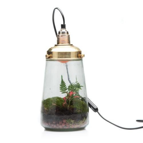 pickle-lamp-photo-9