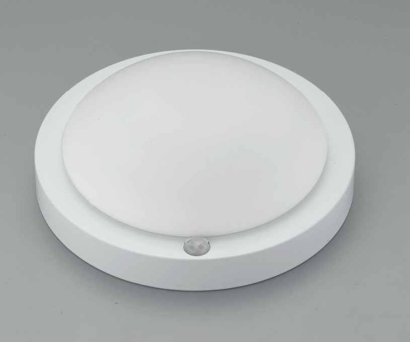 pir-ceiling-light-photo-9