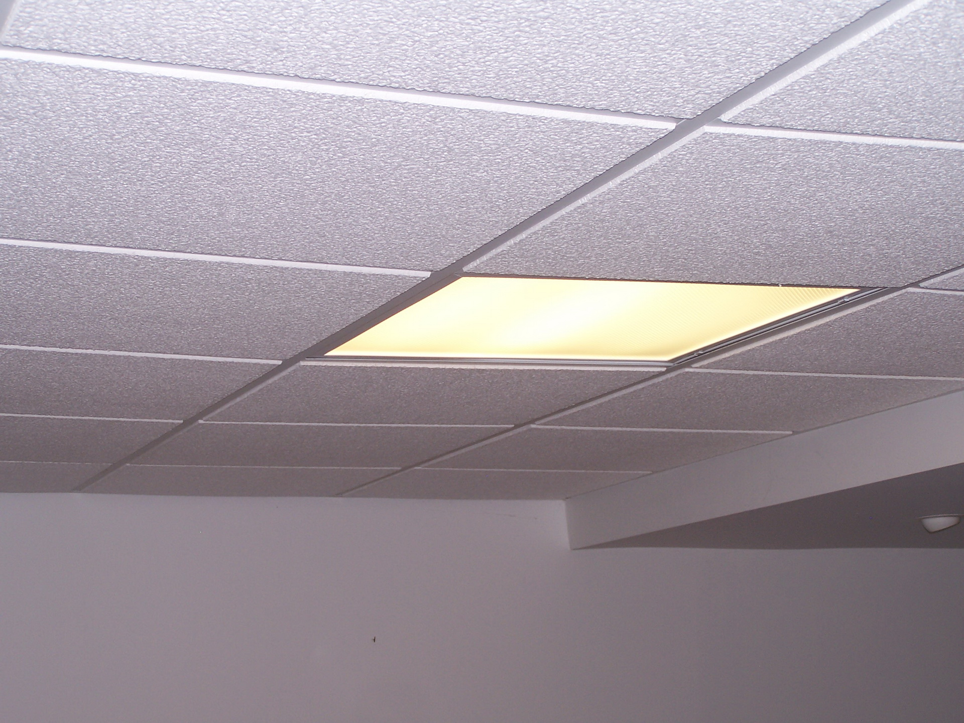 Suspended Ceiling Fluorescent Lights