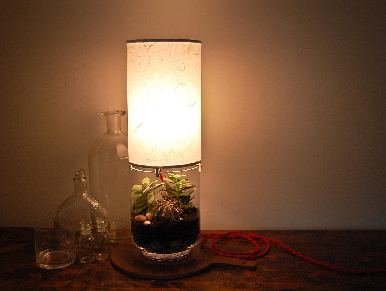 Terrarium Light Fixture Images - Home Fixtures Decoration Ideas