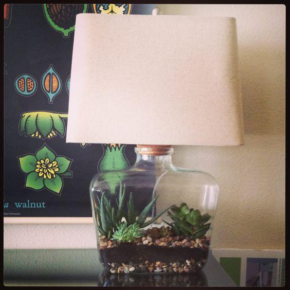 terrarium-lamp-photo-16