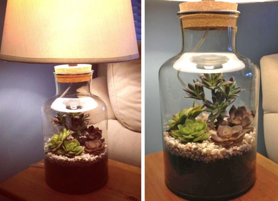 Terrarium Lamp A Beautiful And Unique Way To Bring