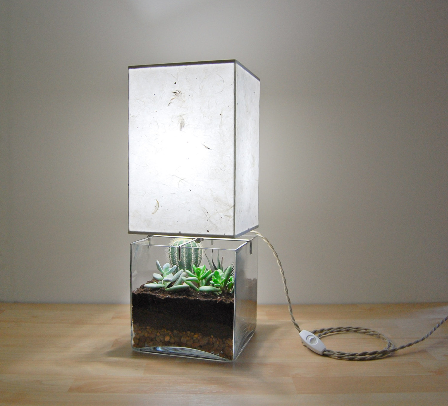Terrarium lamp - a beautiful and unique way to bring nature into ...
