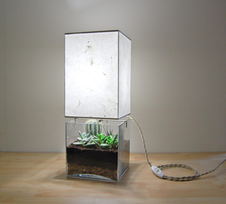 terrarium-lamp-photo-8