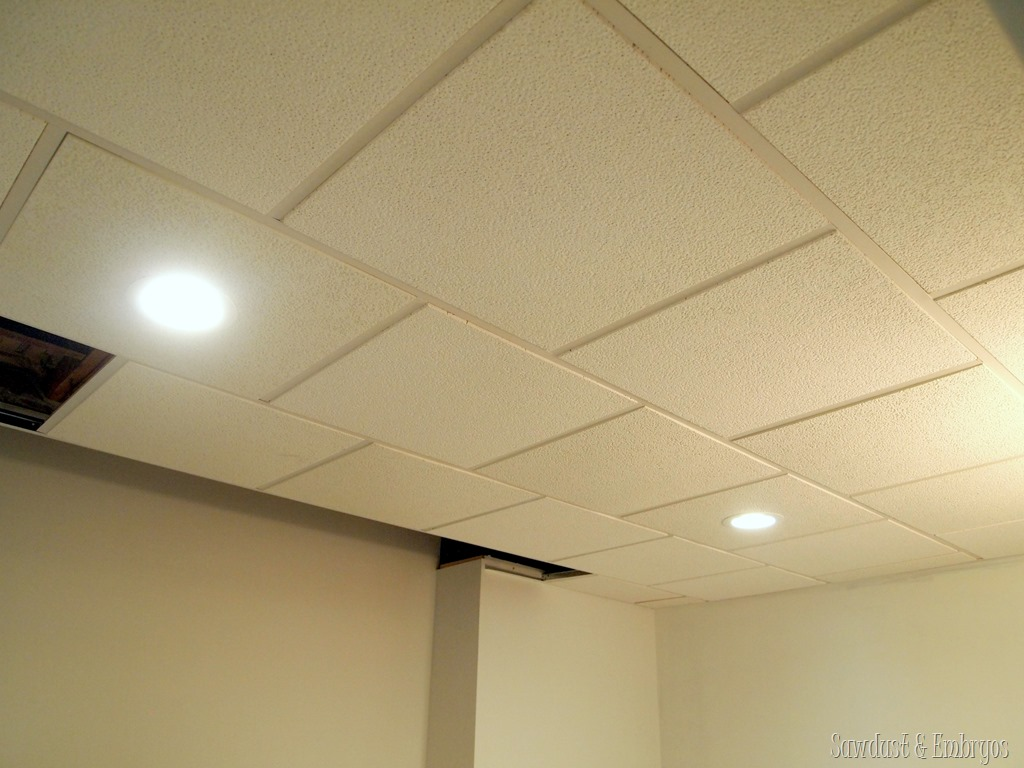 They Come In A Variety Of Options I Would Also Like To Mention That Drop Ceiling Recessed Lights