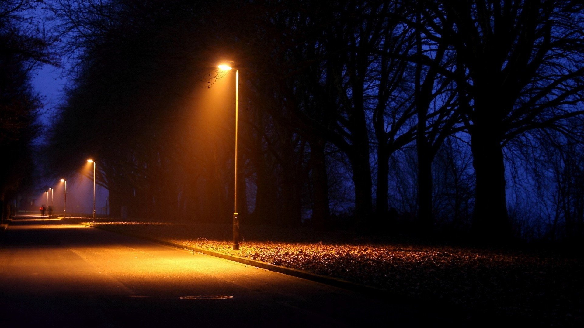 10 new facts to discover about Street lamp at night | Warisan Lighting for Road Lamp At Night  585ifm