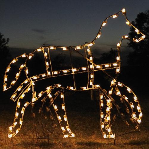 animated-outdoor-christmas-lights-photo-14