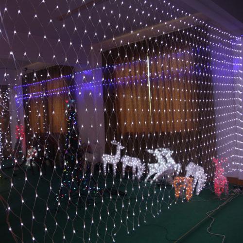 christmas-outdoor-net-lights-photo-11
