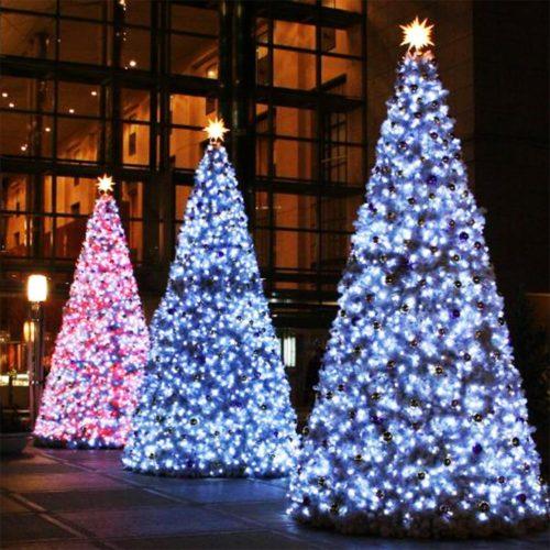 christmas outdoor net lights photo 15