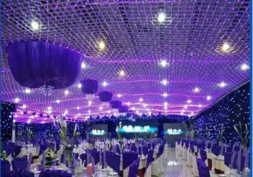 christmas-outdoor-net-lights-photo-8