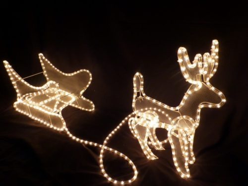 christmas-outdoor-rope-lights-photo-15