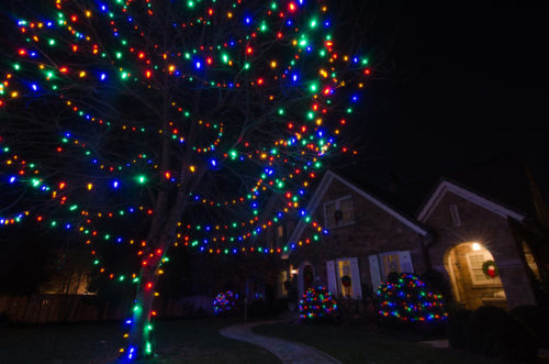 colored-outdoor-christmas-lights-photo-11