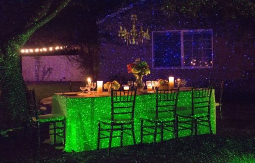 elf-light-indoor-outdoor-laser-light-photo-8