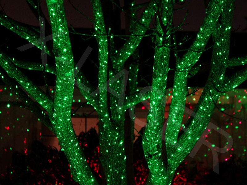 green-outdoor-christmas-lights-photo-12