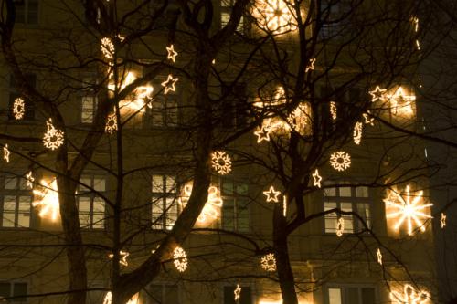 Unusual Christmas Trees To Buy