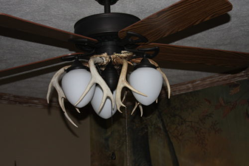 mossy-oak-ceiling-fan-photo-3