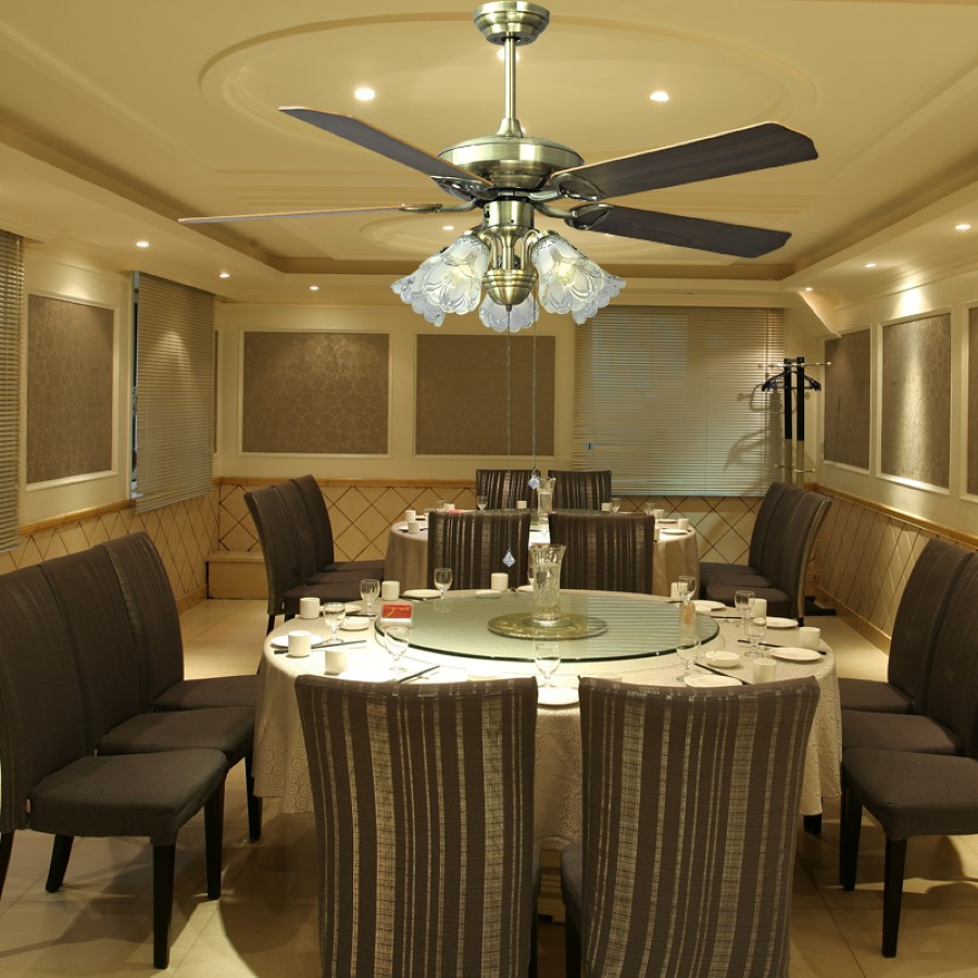 Dining Room Ceilings: Ceiling Fan For Dining Room