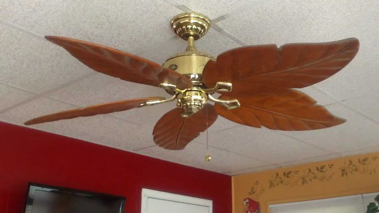 Hampton Bay Ceiling Fans : Improving the interior of your home with hampton bay