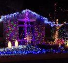 Musical outdoor christmas lights Photo - 1