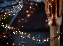 Twinkle lights outdoor Photo - 1