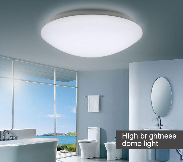 12v led ceiling lights photo - 6