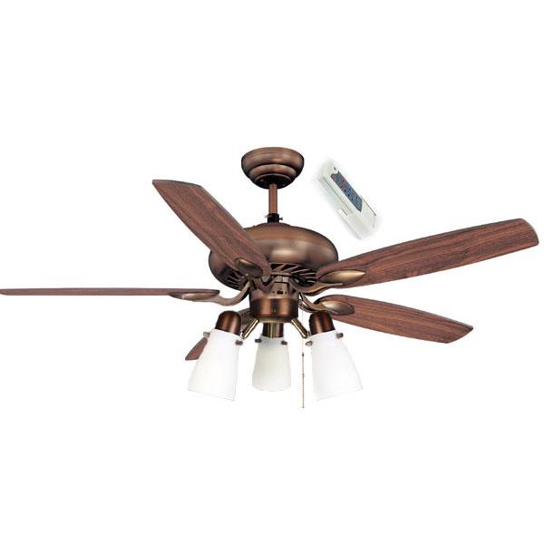 5 light ceiling fan photo - 6