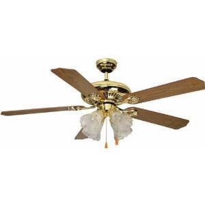 Aloha Breeze Ceiling Fan Makes Certain You Purchase The