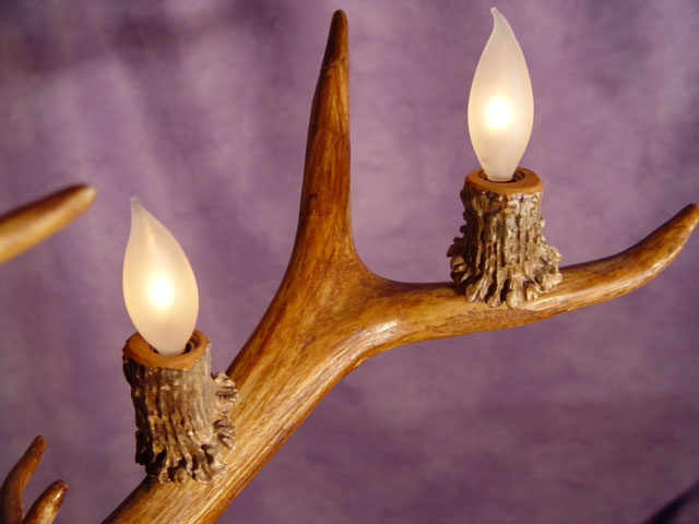 antler lamps photo - 9