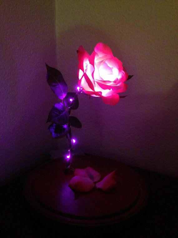 beauty and the beast lamp photo - 10