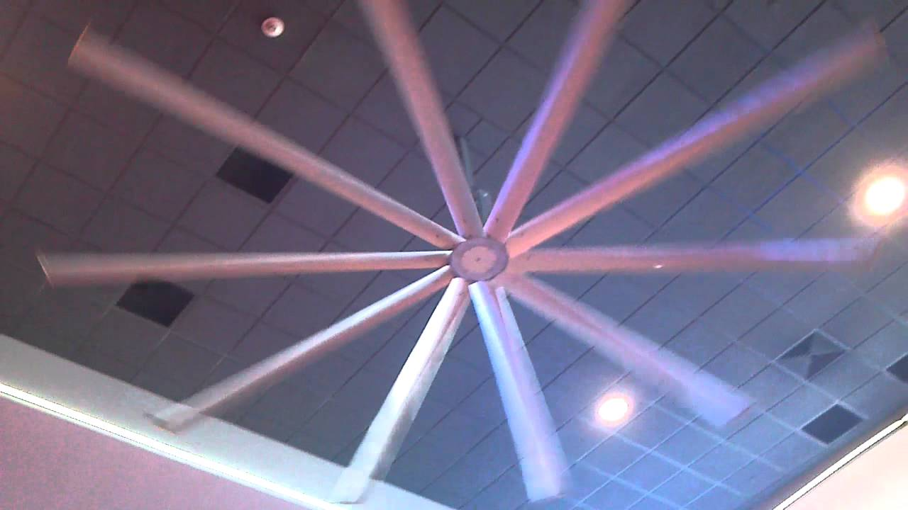 biggest ceiling fan photo - 1