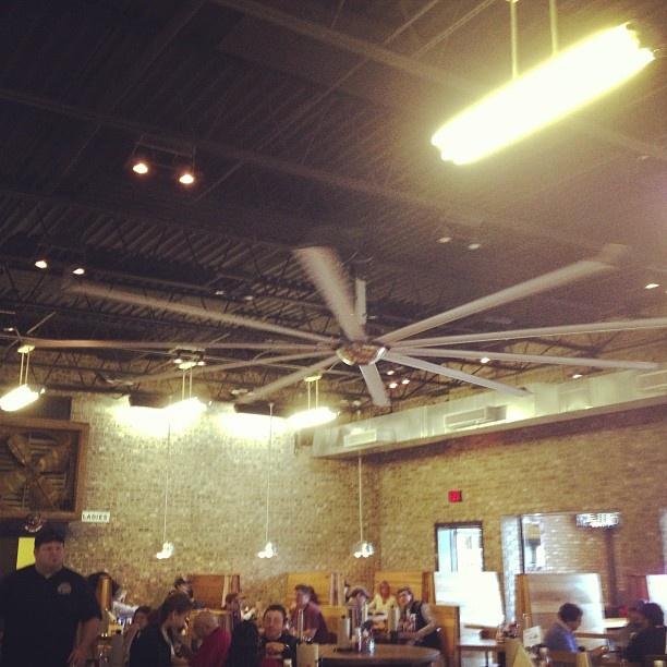 biggest ceiling fan photo - 8