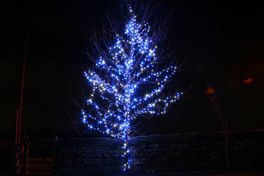 blue and white outdoor christmas lights photo - 1