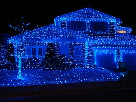 blue and white outdoor christmas lights photo - 4