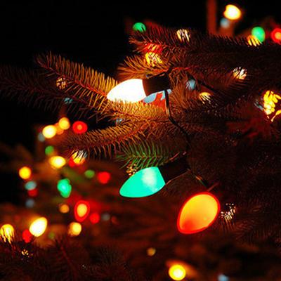 c9 outdoor christmas lights photo - 9