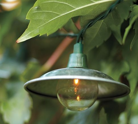 cafe string lights outdoor photo - 4