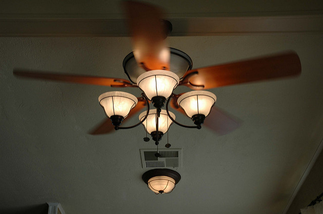 ceiling fan for dining room photo - 2