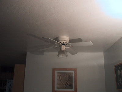 ceiling fan for dining room photo - 7