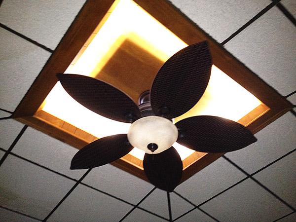 ceiling fan led light photo - 6