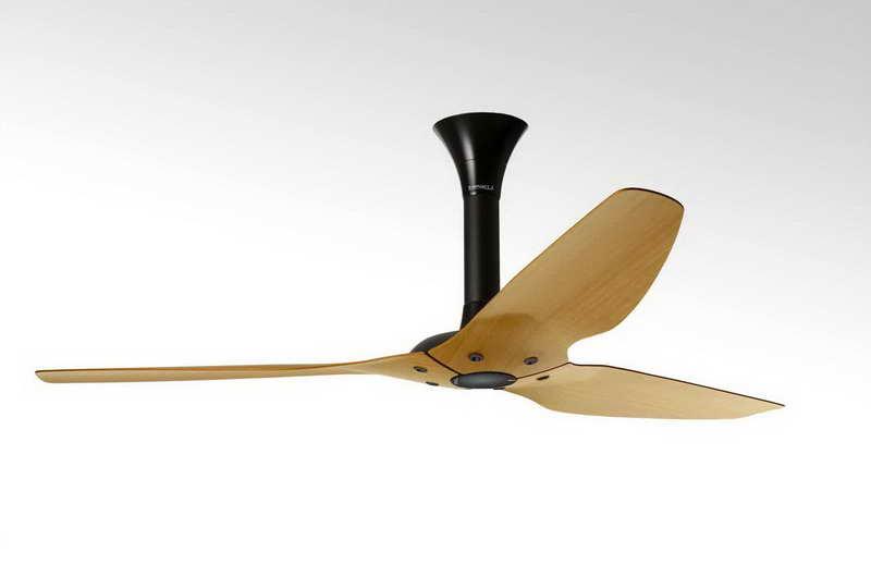 ceiling fan wood photo - 4