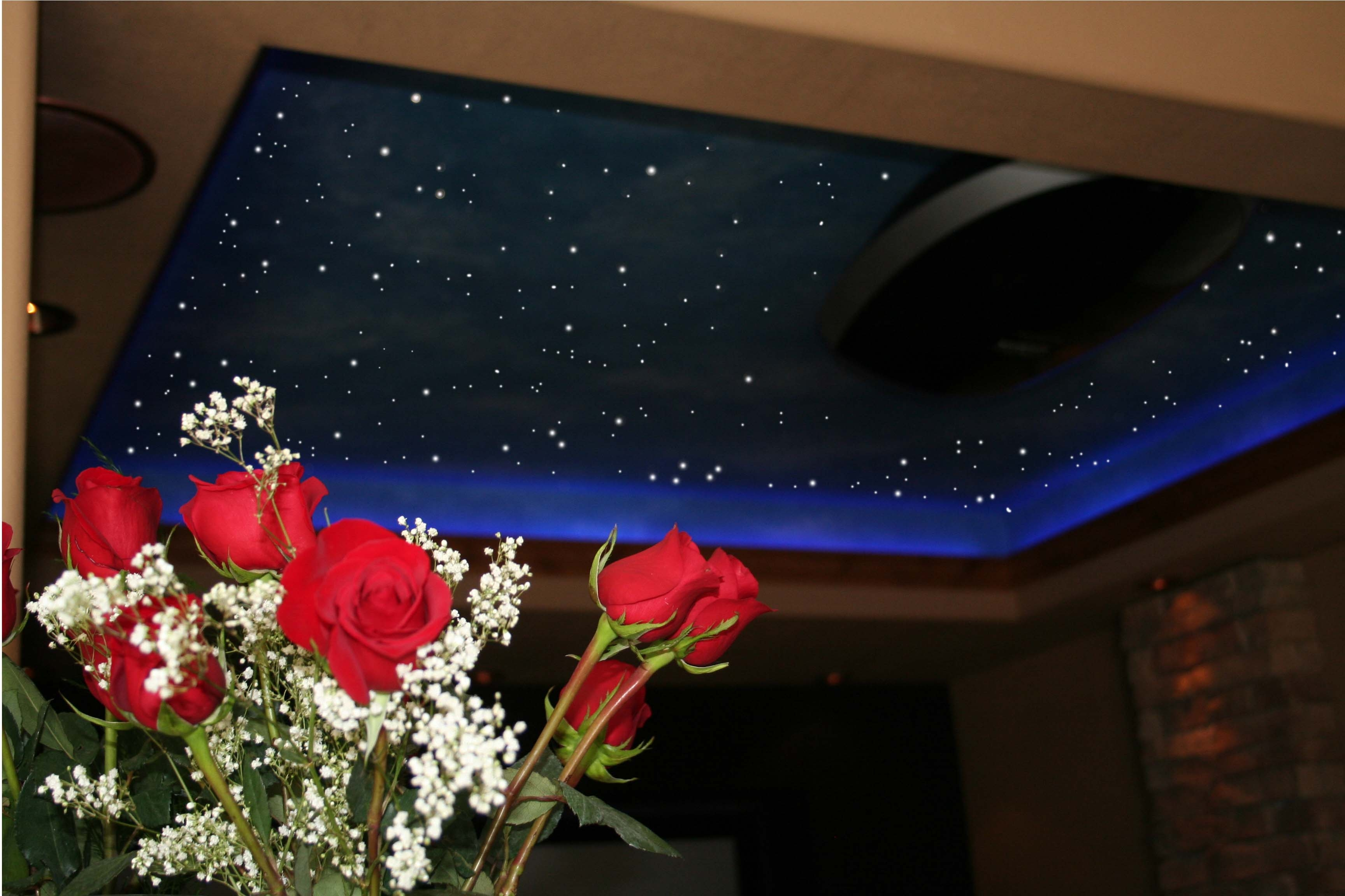 ceiling fibre optic lights photo - 5