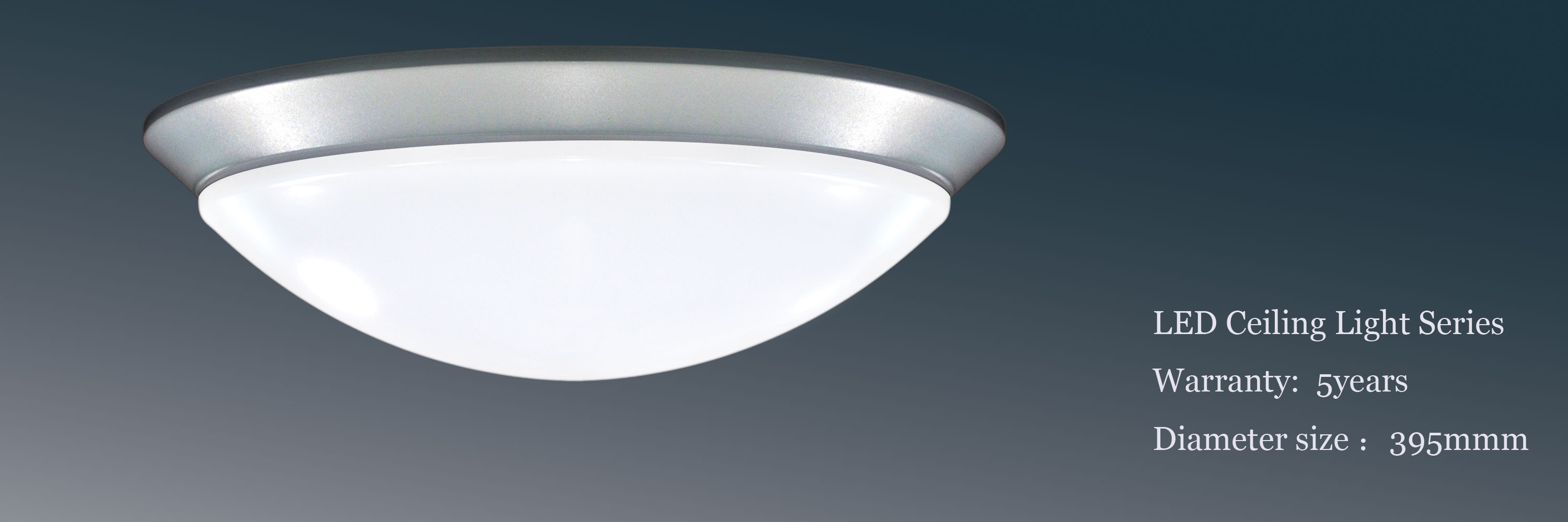 Ceiling Motion Light: ceiling motion sensor light photo - 1,Lighting