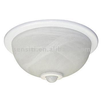 Ceiling Motion Light: ceiling motion sensor light photo - 3,Lighting