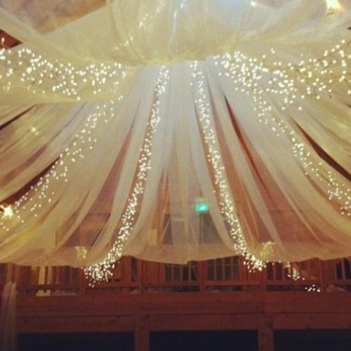 Ceiling Twinkle Lights: ceiling twinkle lights photo - 3,Lighting