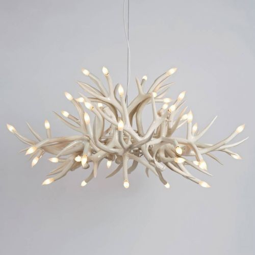 chandeliers ceiling lights photo - 8