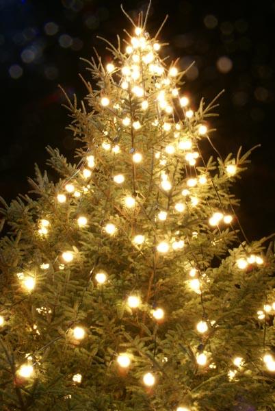 christmas lamps photo - 3
