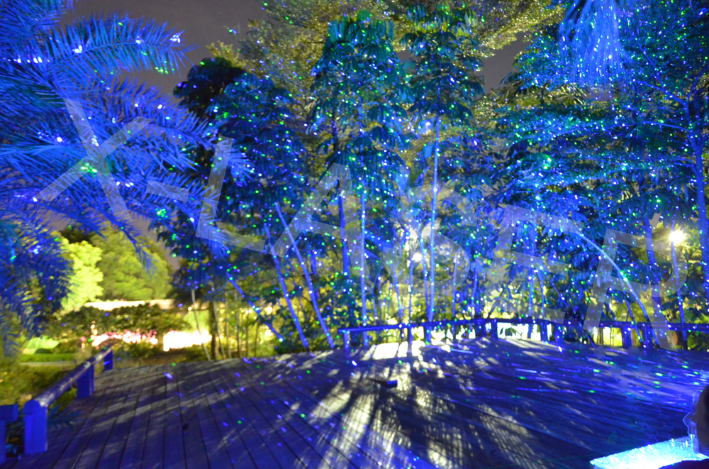 christmas laser lights outdoor photo - 9