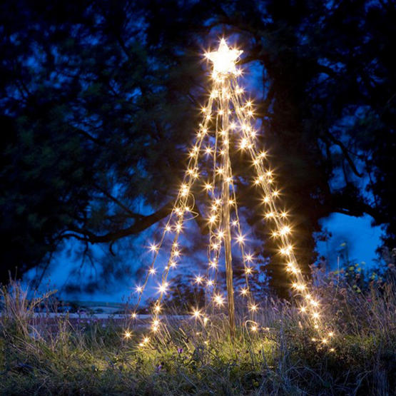 christmas light trees outdoor photo - 3