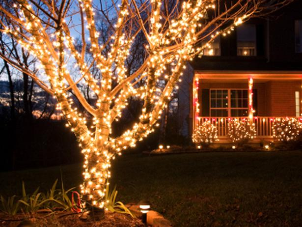 christmas lights in trees outdoors photo - 7